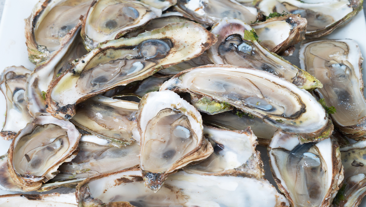 South African oysters linked to illness in Hong Kong